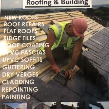 Eco roofing and building