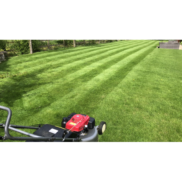 Ryan Gardening Ltd