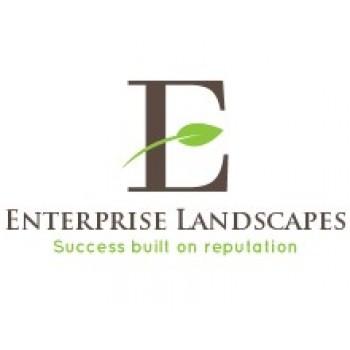 Enterprise landscapes