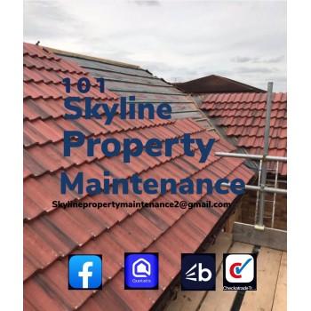 101 Skyline Property Maintenance Ltd