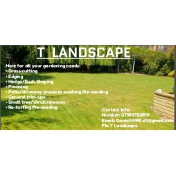 T Landscape