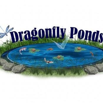 Dragonfly Ponds