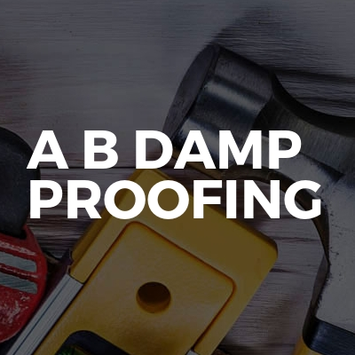 A B Damp Proofing
