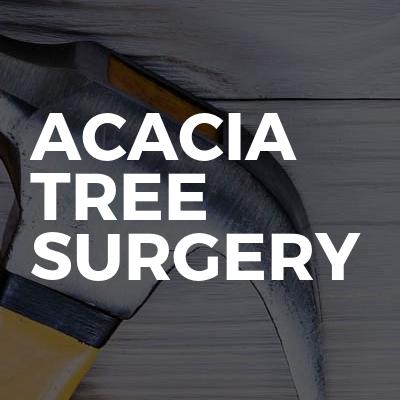 Acacia tree surgery