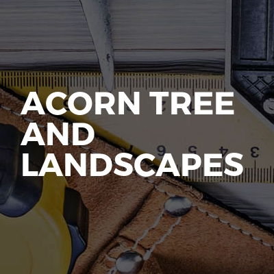 Acorn Tree And Landscapes