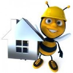 Always Bee Building