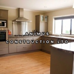 Animus Construction