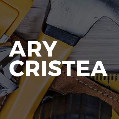Ary Cristea