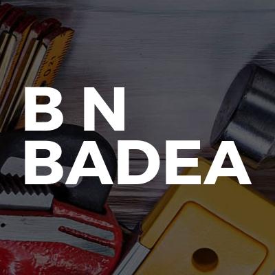 B N Badea