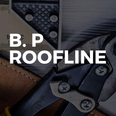B. P Roofline