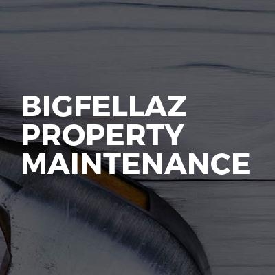 Bigfellaz Property Maintenance