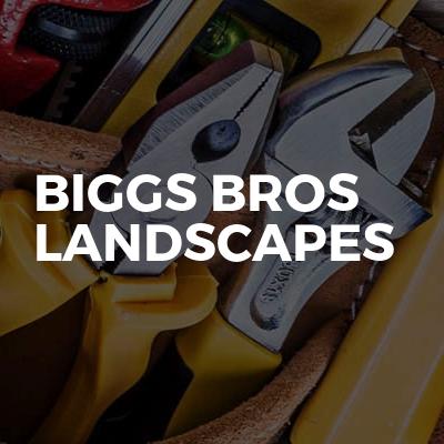 Biggs bros landscapes