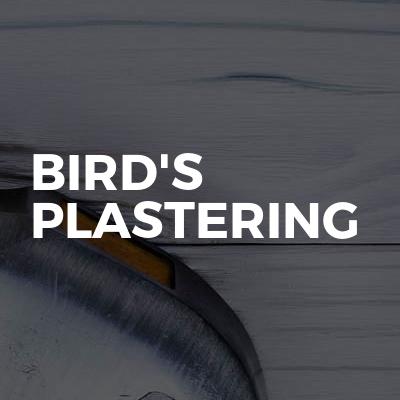 Bird's plastering