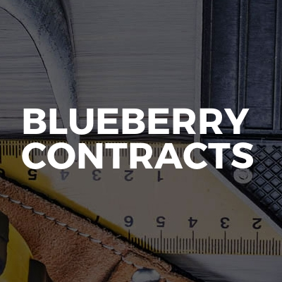 Blueberry contracts