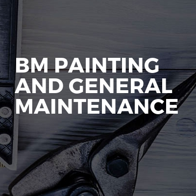 BM Painting And General Maintenance