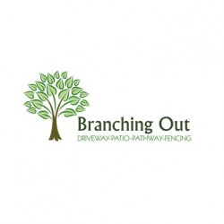 Branching out Ltd