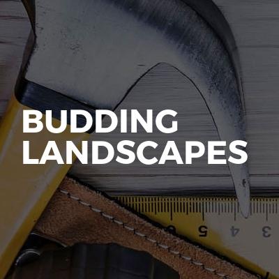 Budding Landscapes