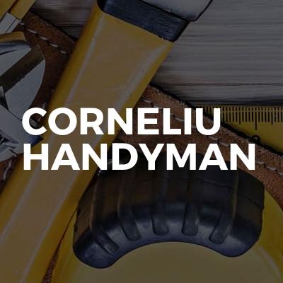 Corneliu Handyman