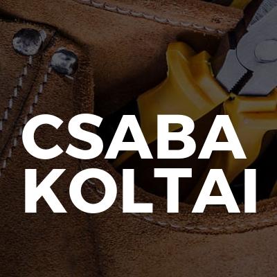 Csaba Koltai