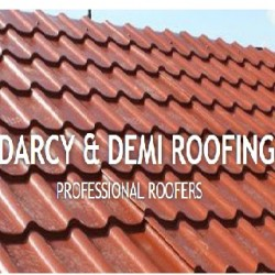 Darcy & Demi roofing