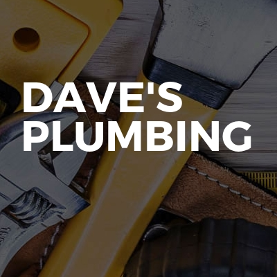 Dave's plumbing services