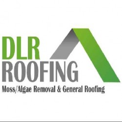 DLR Roofing