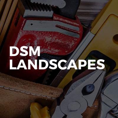 DSM Landscapes