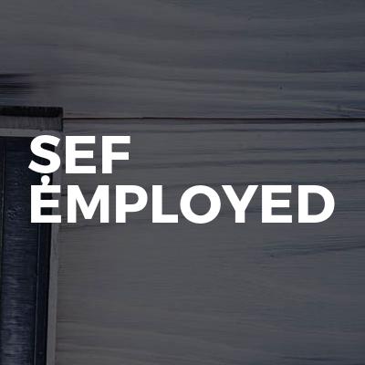 Șef Employed