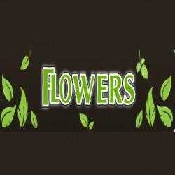 Flowers Landscape Gardening Ltd