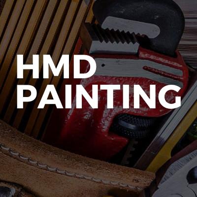 HMD Painting