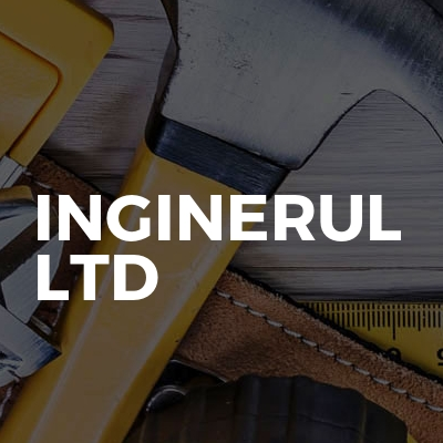 Inginerul Ltd
