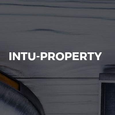 InTu-Property