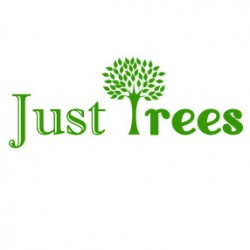 Just Trees Limited