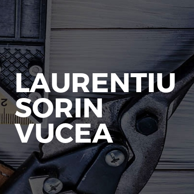 Laurentiu Sorin Vucea