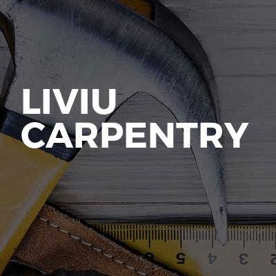 Liviu carpentry