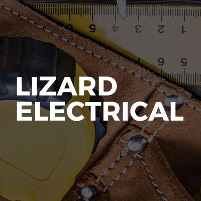 Lizard electrical