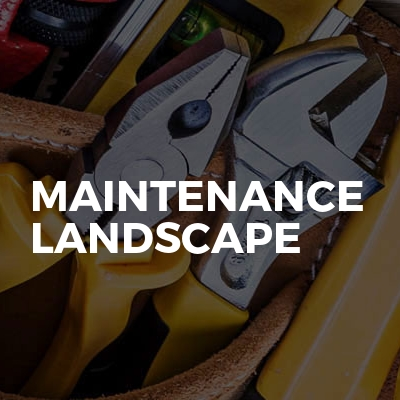 Maintenance Landscape