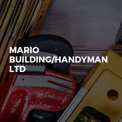 MARIO BUILDING/HANDYMAN LTD
