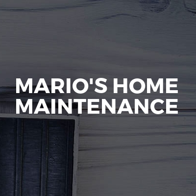 Mario's home maintenance
