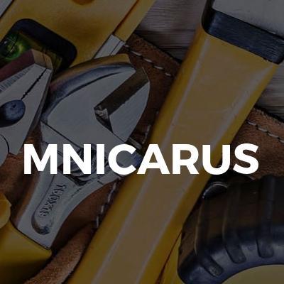 MNIcarus
