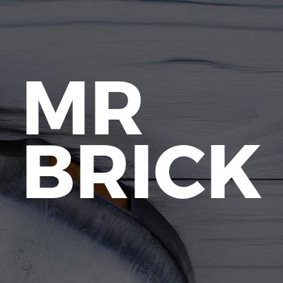 Mr Brick