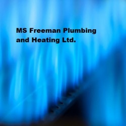 MS Freeman Plumbing & Heating LTD