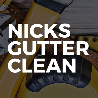 Nicks gutter clean