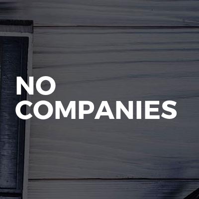 No companies