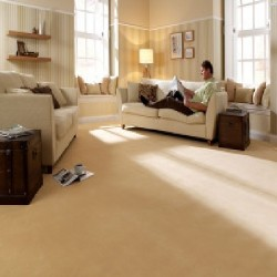 Norwood Carpets