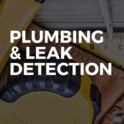 Plumbing & Leak Detection