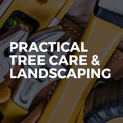 Practical Tree Care & Landscaping
