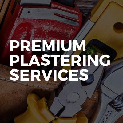 Premium Plastering Services