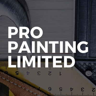 Pro painting limited