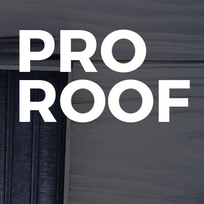 Pro Roof